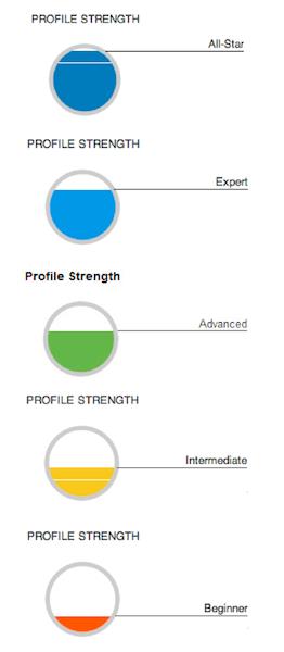 LinkedIn's profile completeness measure